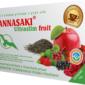 Ultraslim fruit - červený ovocný čaj Pchu-er s brusinkou, jahodou, jablkem, černým rybízem, lékořicí, čekankou a červenou řepou - zdravé čaje Hannasaki